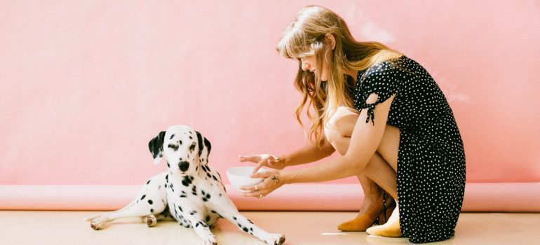 A woman feeding a dalmatian - get a pet-sitter for your long-distance move with your pet