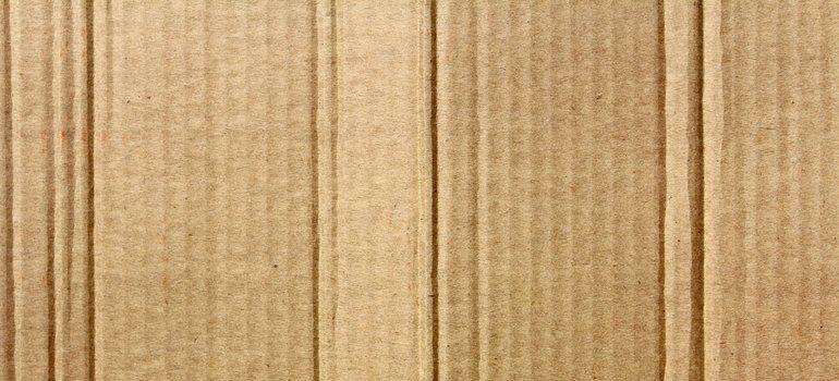 Cardboard.
