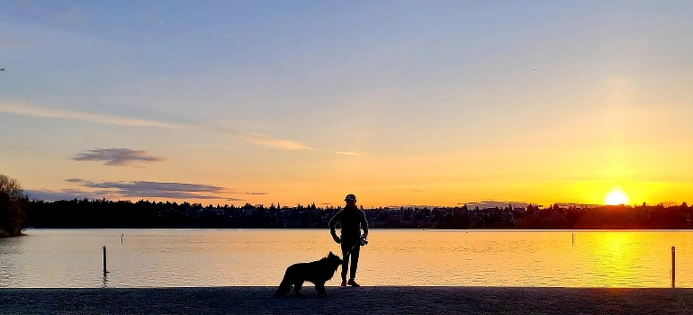 A man and a dog on a sunset