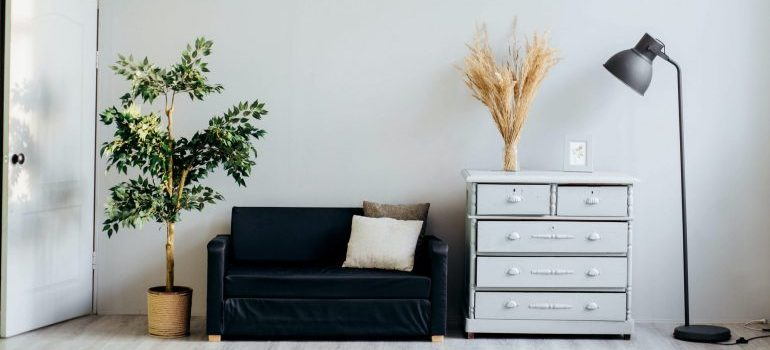 With the right tools and a solid plan, moving furniture is a breeze
